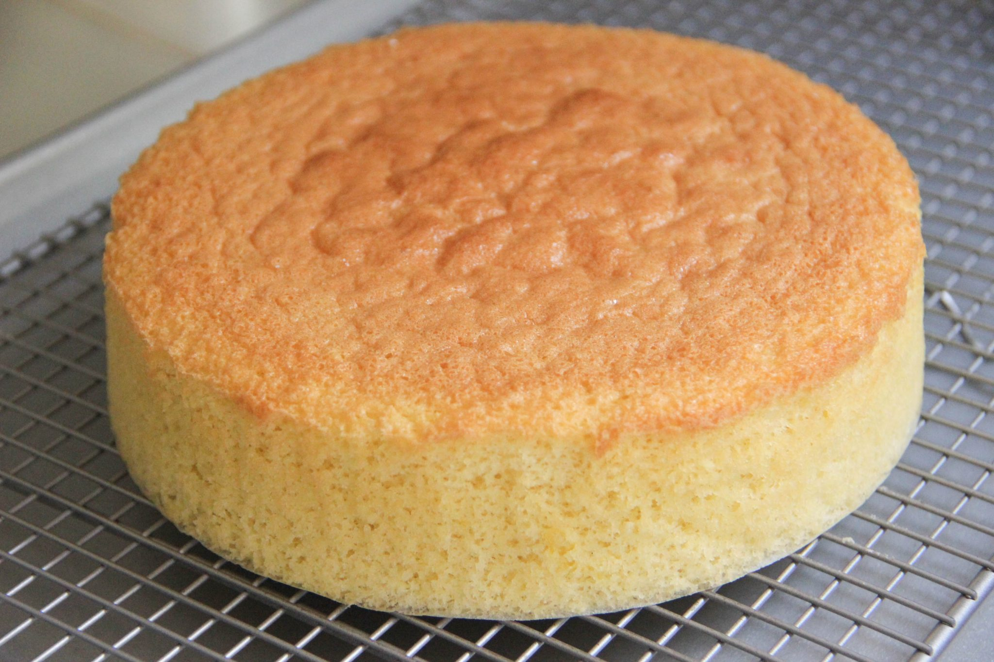 Rice Flour Sponge Cake Recipes